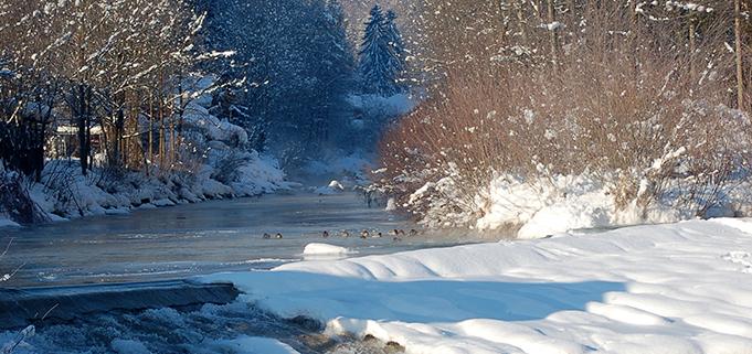 Winterlandschaft mit Gebirgsbach im Luftkurort Kiefersfelden