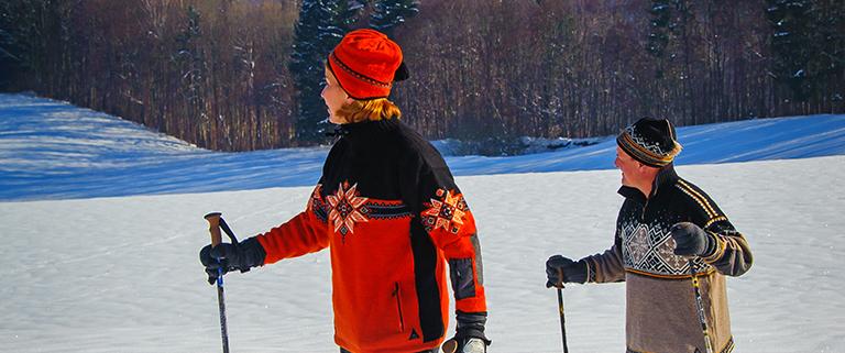 Wanderer mit Schneeschuhen und Stöcken in winterlicher Landschaft mit Schnee